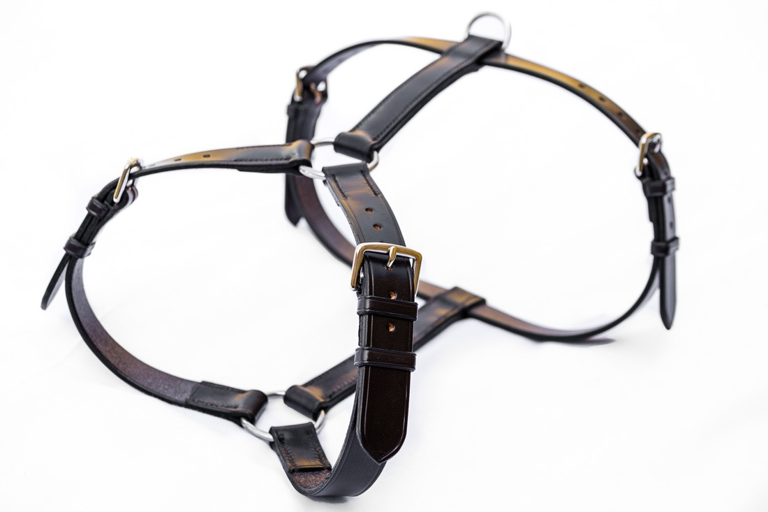 Bespoke Leather Dog Harness from Tony Collins of TC Leatherwork