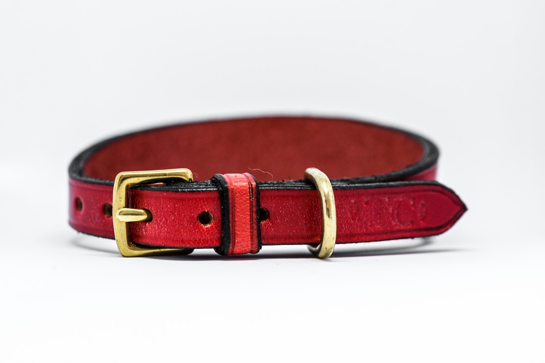 English leather coloured Sighthound collars by TC Leatherwork